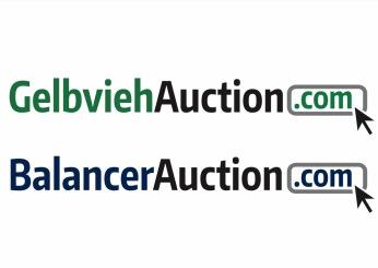 GelbviehAuction Logo